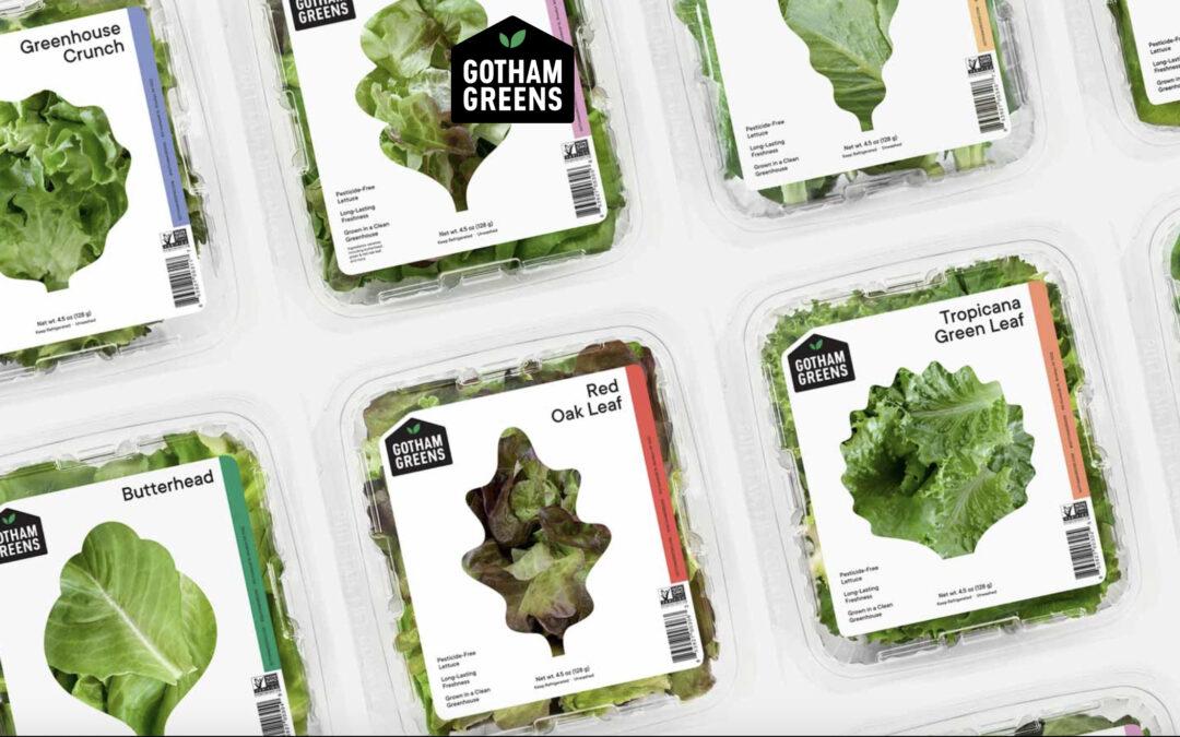 New York-based indoor ag company Gotham Greens raises $87 million